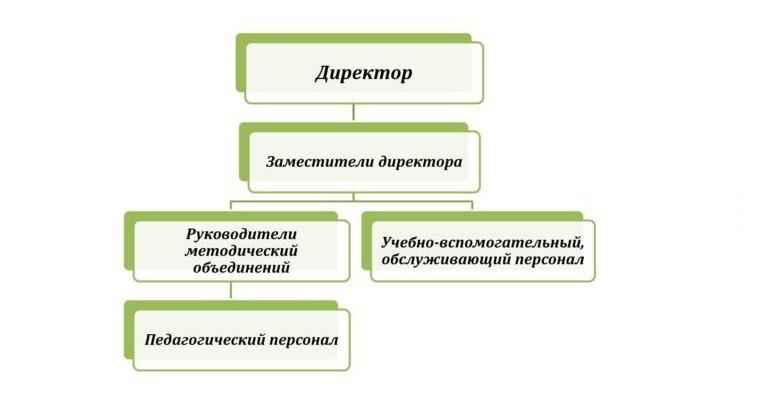 Структура и органы управления